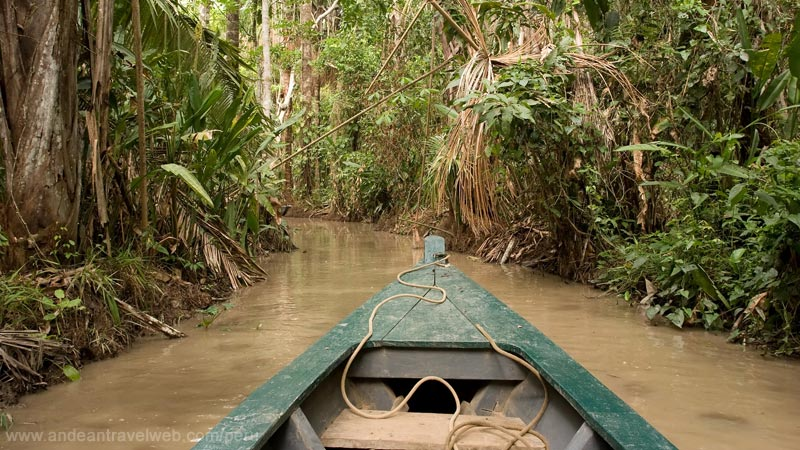Small tributaries of the Amazon Peru